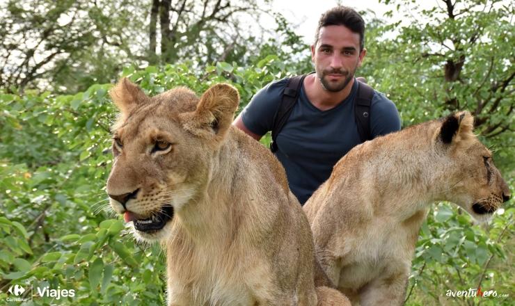 Dos leones.jpg